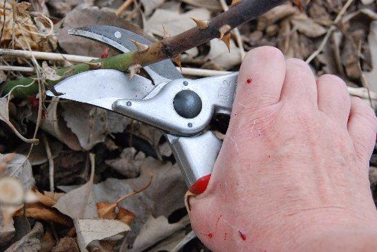 Фото с сайта: www.youtube.com