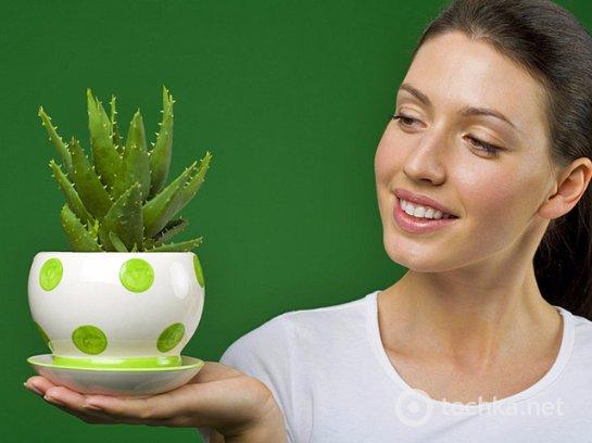 Фото с сайта: lady.tochka.net