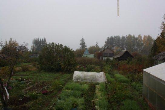 Фото с сайта: my.mail.ru