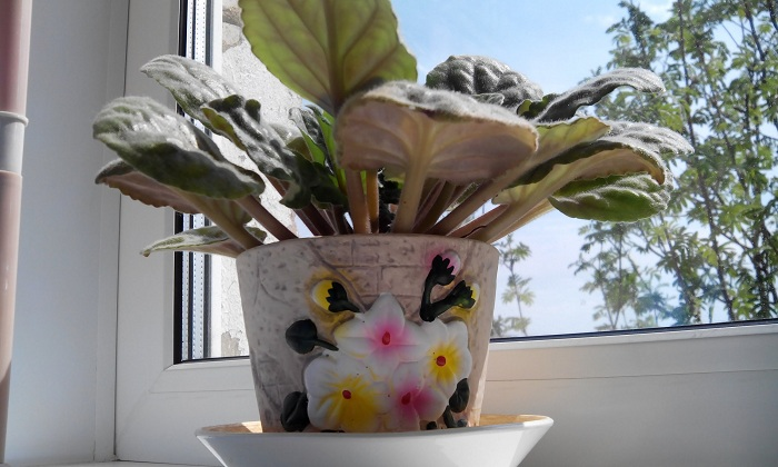Фото с сайта: i.ytimg.com