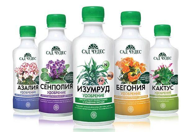 Фото с сайта: cdn01.ru