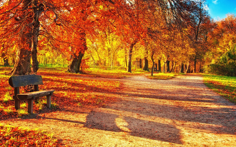фото с сайта http://eveningkiev.com/