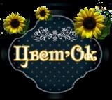 "Интернет магазин -салон цветов и подарков ""ЦветОк"""